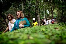 Festival del Cacao en La Hacienda Buena Vista.