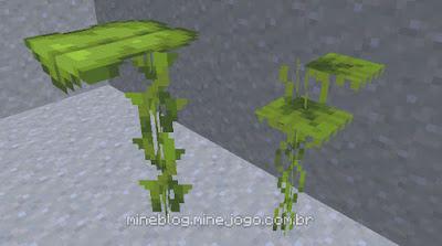 Plantaforma Grande (esquerda) e Plantaforma pequena (direita)