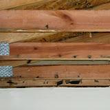 CarpentryWaterDamageAfterDemoCedarburg