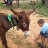 Campaments Estiu Cabanelles 2014 - IMG_0052.JPG