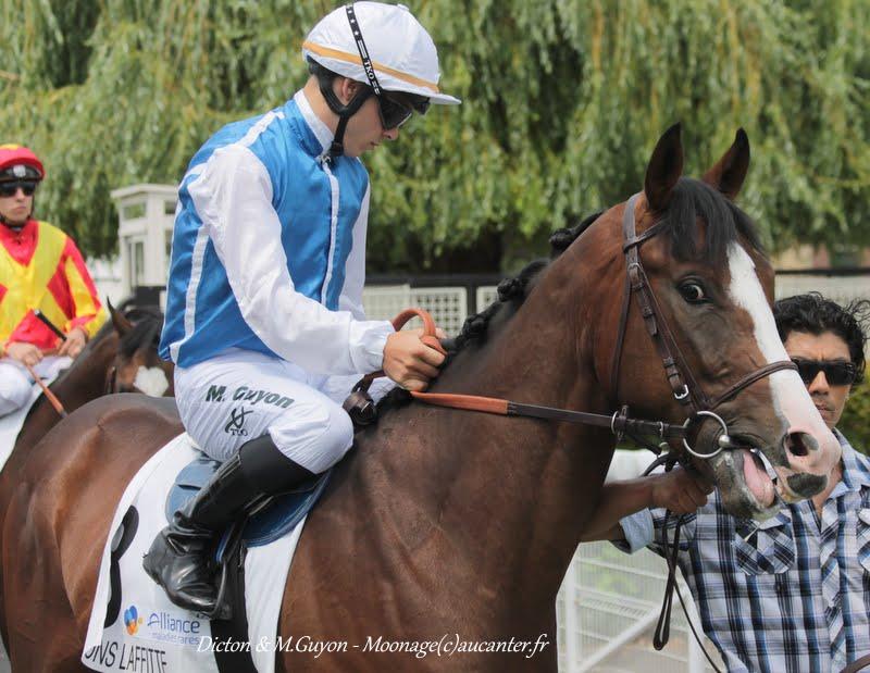 Photos Maisons-Laffitte 5-07-2015 IMG_2157