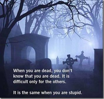 dead vs stupid 4