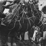 11.1971г.Куш-Кая. Крым. Наташа Лотарева. Демонстрация спасработ.