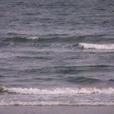 Galveston Vacation 2011 - 115_0240.JPG