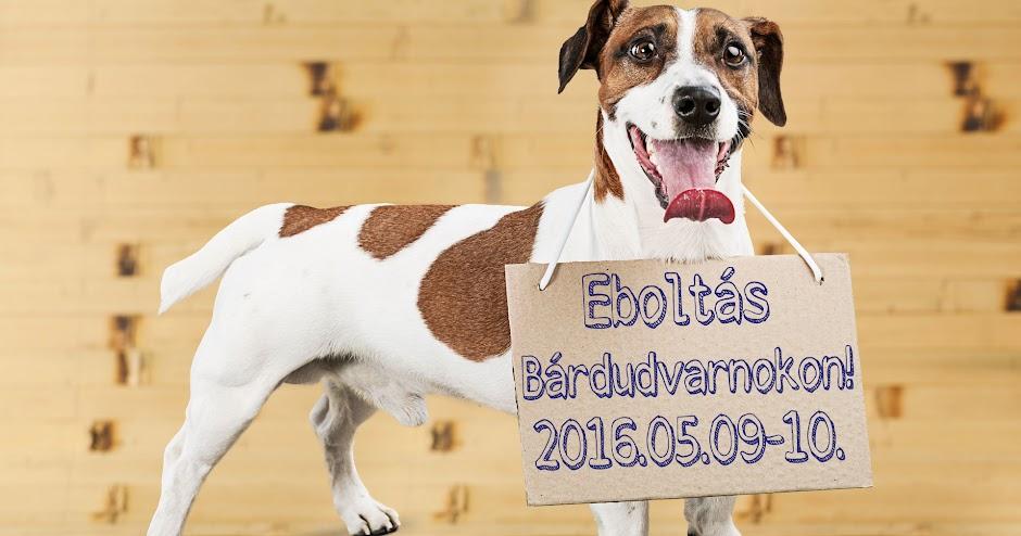 Eboltás Bárdudvarnokon 2016.05.09-10
