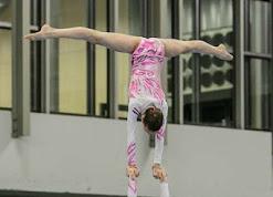 Han Balk Fantastic Gymnastics 2015-9906.jpg