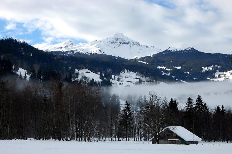 Gimmelwald, Swiss