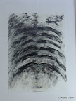 """""""Corpus"""", Acryl, Papier, 2005"""