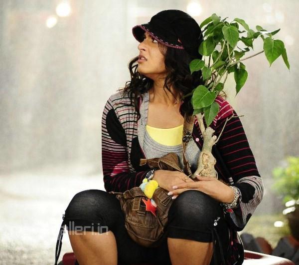 Hot Indian Actress Exclusive Tollywood Kollywood Actress Anushkaanuskha Shetty -3196