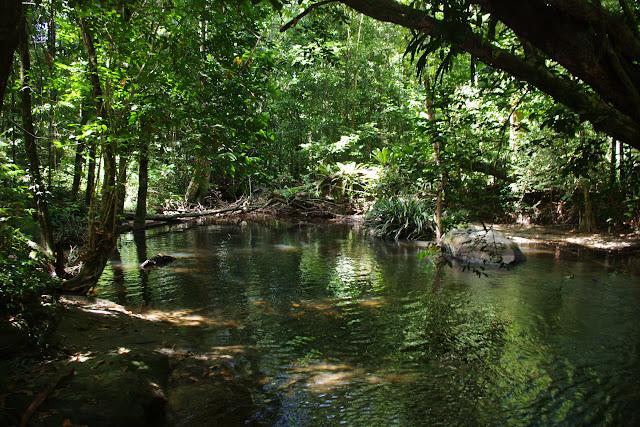 La Crique Nouvelle France à Courant Doublé. Saül (Guyane), 14 novembre 2012. Photo : J.-M. Gayman