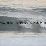 _DSC5954.thumb.jpg