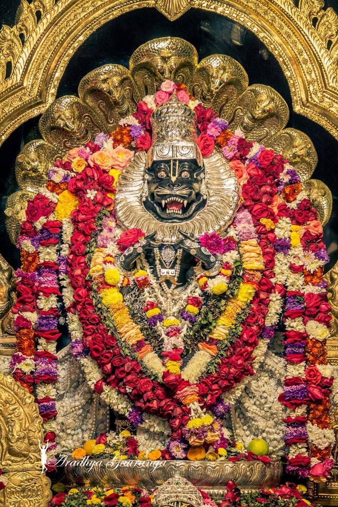 ISKCON Mayapur Deity Darshan 13 Jan 2017 (39)