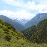 Vallée caucasienne près d'Elbruz (Kabardino-Balkarie), 9 août 2014. Photo : J. Marquet