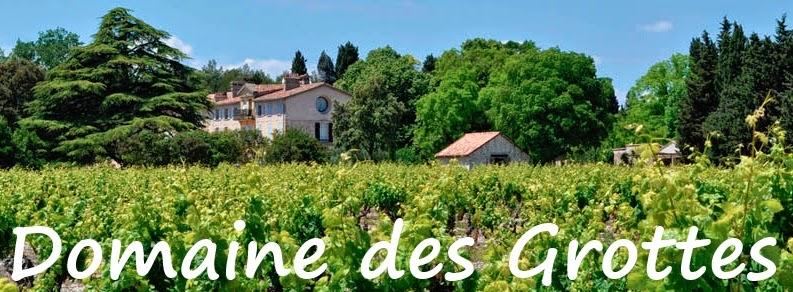 domaine+des+grottes-dracenie-var-la+motte+en+provence-vignes-oliveraie