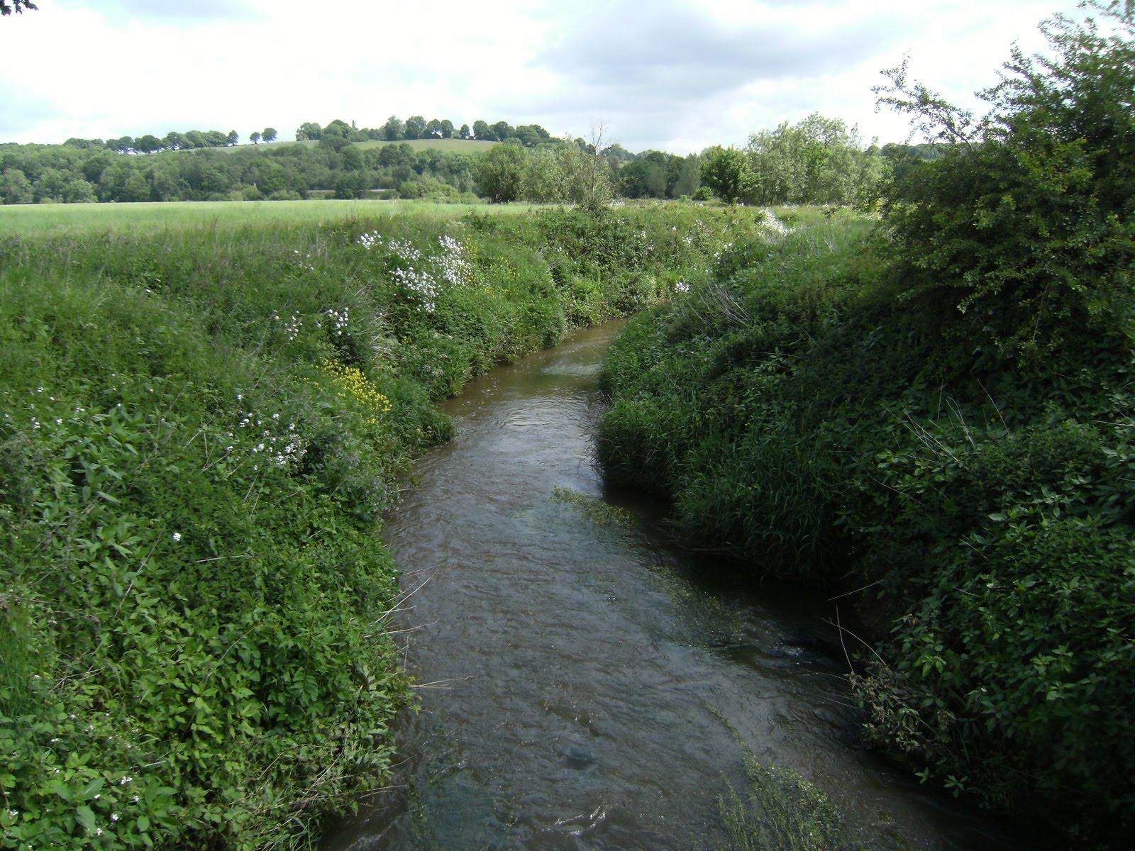 1006120007 River Medway