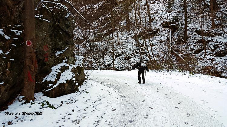 drum forestier cascada lotrisor iarna