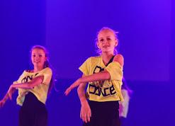 Han Balk Voorster Dansdag 2016-3180.jpg