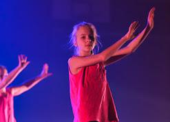 Han Balk Voorster Dansdag 2016-4626-2.jpg