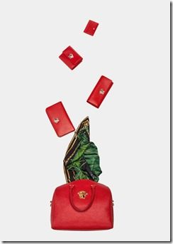 Versace_Small_Leather_Goods_2016_Group_2.jpg