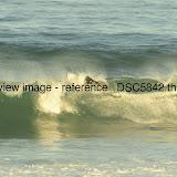_DSC5842.thumb.jpg
