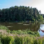 20140725_Fishing_Sergiyivka_009.jpg