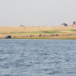 20140706_Fishing_Prylbychi_069.jpg