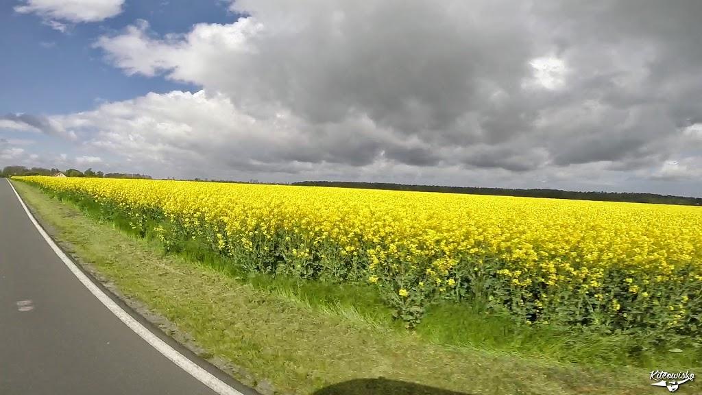 vlcsnap-2015-05-13-18h44m15s145