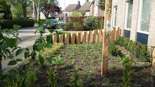 Voortuin met veel hout en beplanting