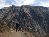 Colca Canyon - Condor viewpoint