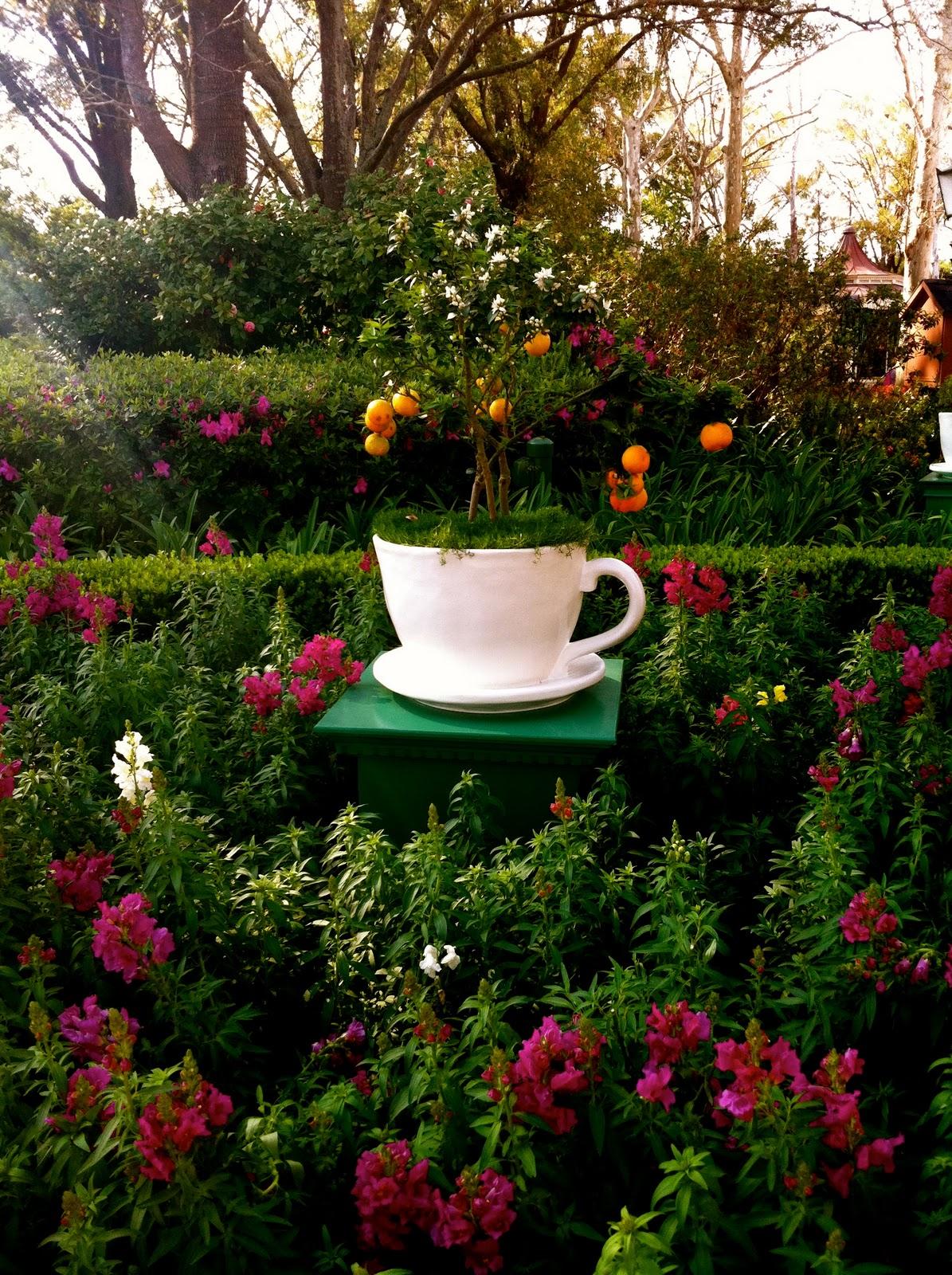 Lou Girl Plus Tea: English Tea Garden / My Dream Garden