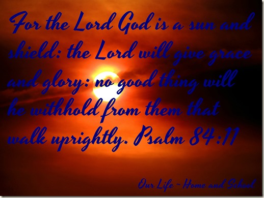 Scripture and a Snapshot - 81317