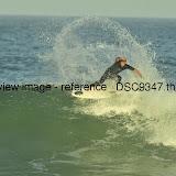 _DSC9347.thumb.jpg