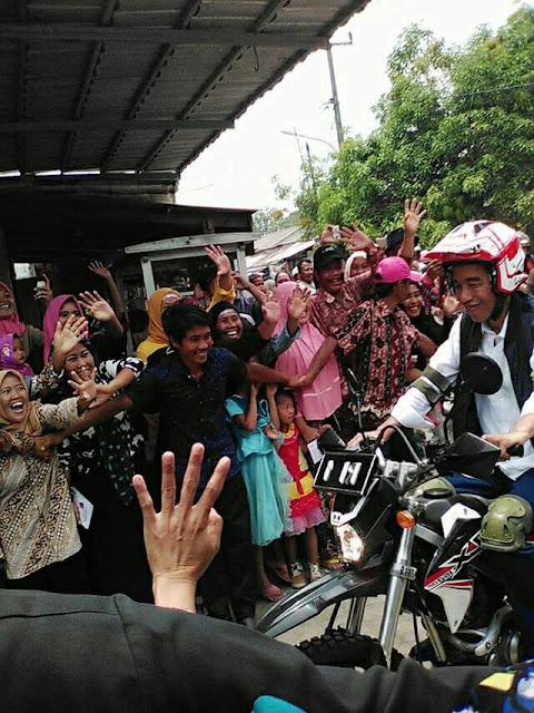 Jokowi tinjau Perhutanan sosial di muara gembong