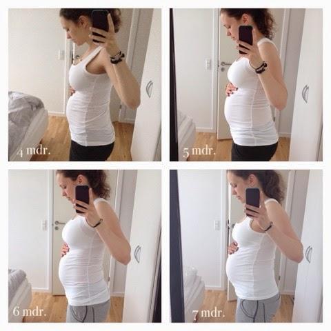 gravid 4 måneder
