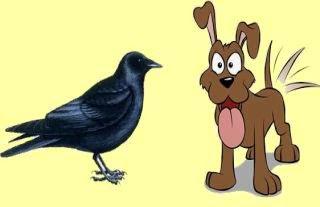 fabula el perro y la corneja