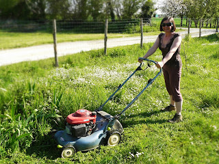 french village diaries mower gardening lawn