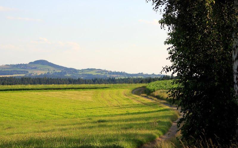 19. Juli 2016: On Tour zur Kapelle in Höll - H%25C3%25B6ll%2B%25285%2529.jpg