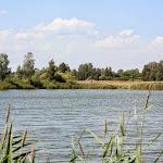 20140730_Fishing_Tuchyn_010.jpg