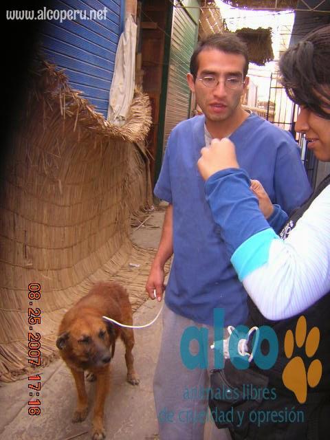 2da asistencia a Pisco por terremoto 2007 (25)