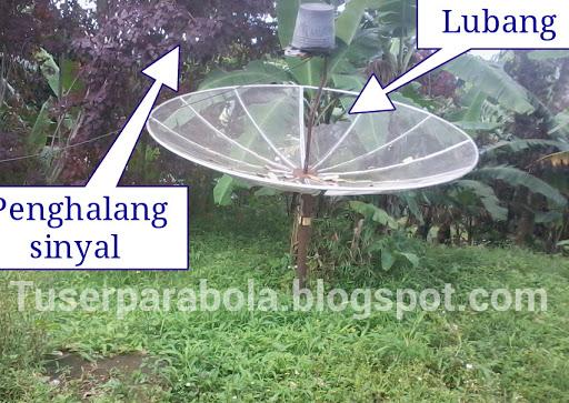 cara cepat memperbaiki parabola tidak ada sinyal