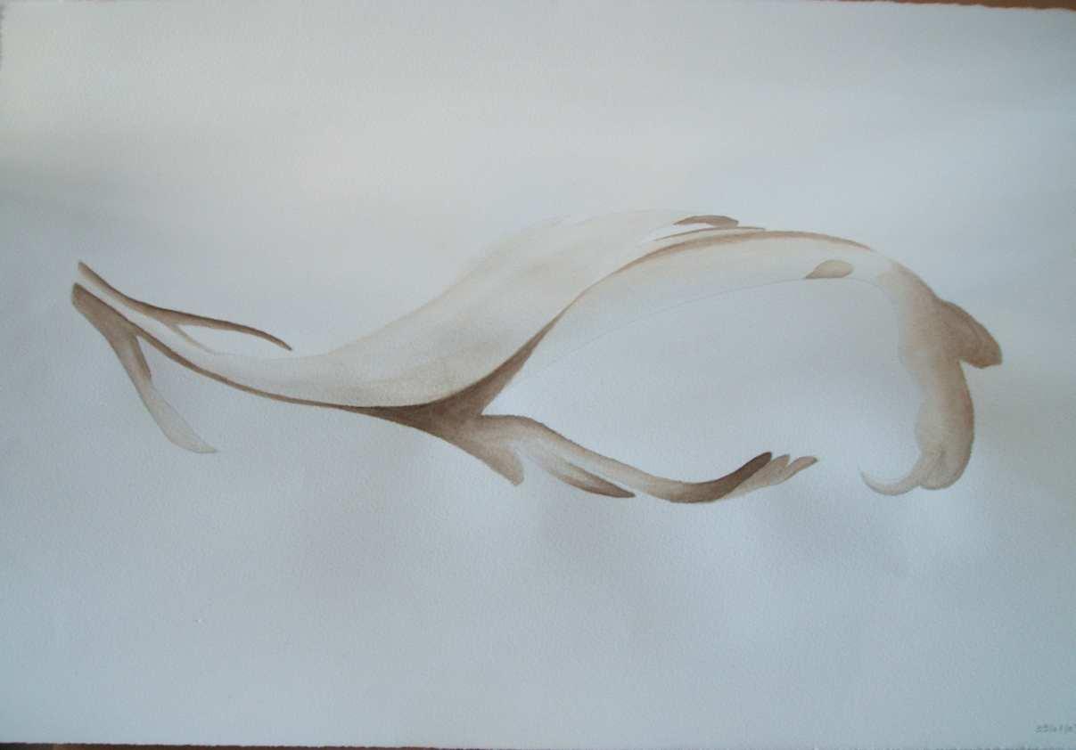 Dessins et peintures de lily les aquarelles - Feuille d acanthe ...