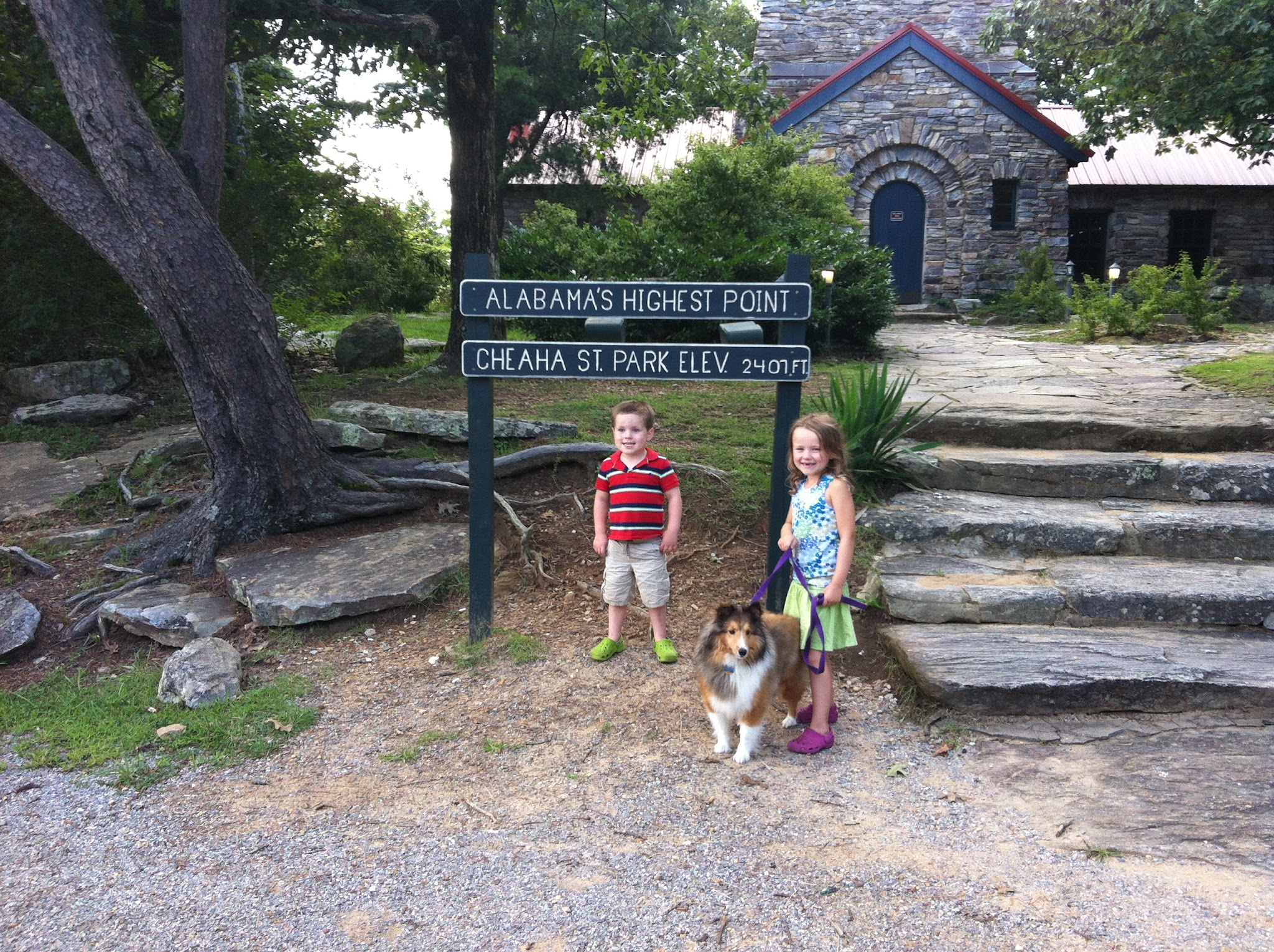Kids at Cheaha Mountain