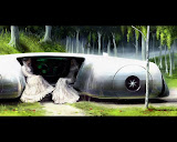 Two Brides In Space Car