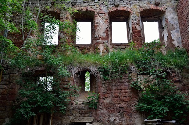 20160514_Schlossruine-Waesserndorf-12.jpg