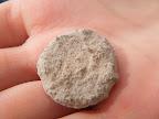 מטבע רומי שנמצא בחצי השעה האחרונה של החפירות