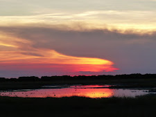 A beautiful Northern Territory sunset on the wetlands