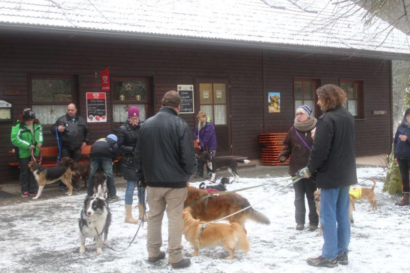 01. Januar 2016: Neujahrswanderung ins Waldnaabtal - IMG_1536.JPG
