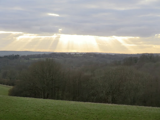 CIMG5501 Later afternoon sunlight over Ashdown Forest