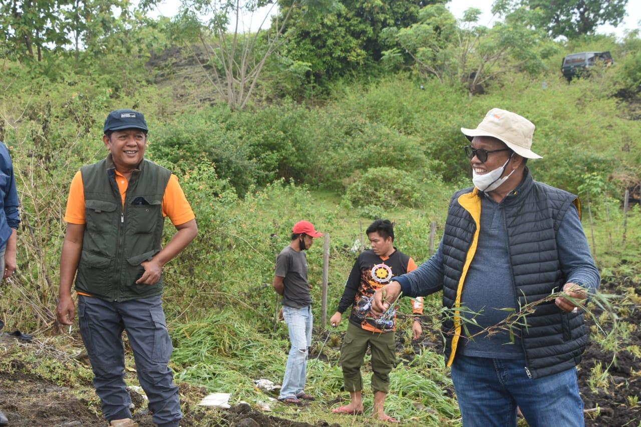 Bupati Soppeng Sambut Kedatangan Direktur Pembibitan Direktorat Jenderal Peternakan Kementerian RI