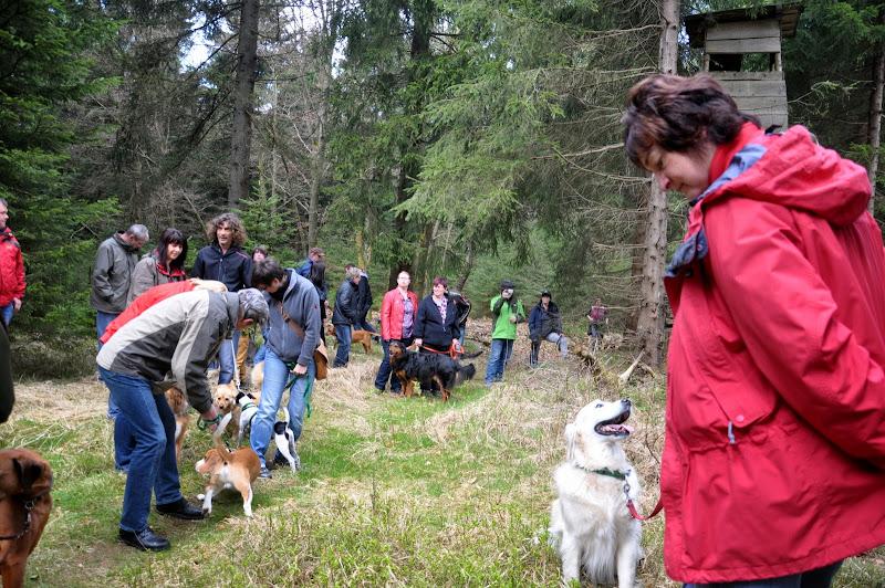 2014-04-13 - Waldführung am kleinen Waldstein (von Uwe Look) - DSC_0408.JPG